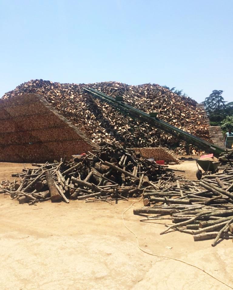 legna-quercia-e-faggio-online-vendita
